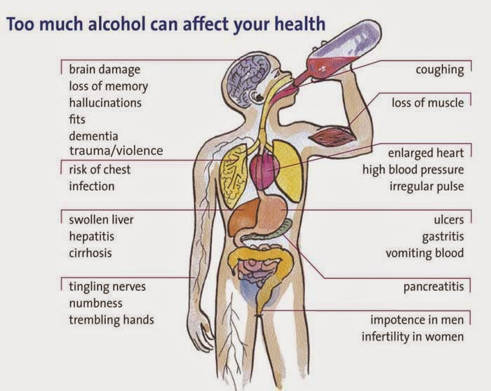 Effects Of Alcohol. Long-Term Effects. Alcohol harm the body.