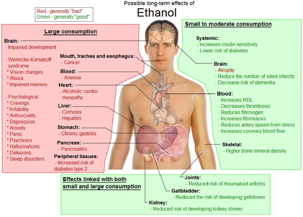 Possible long-term effects of Ethanol