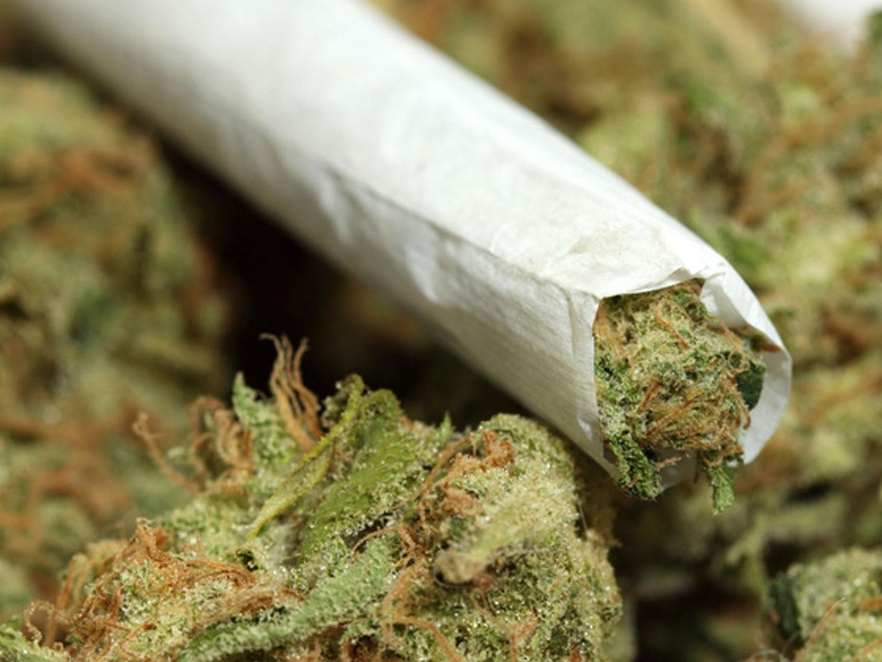 Drug marijuana.