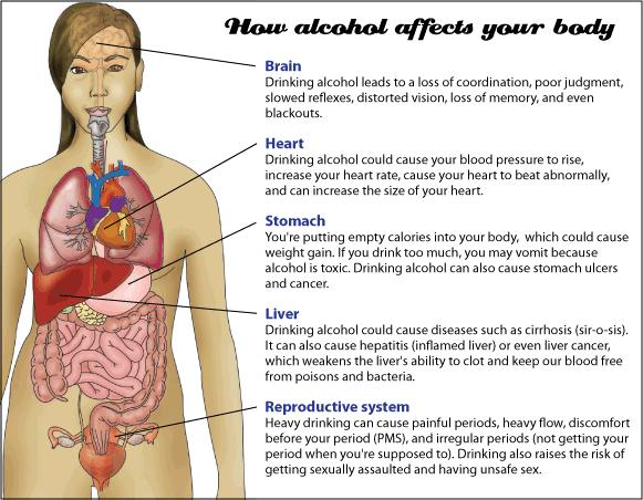 How alcohol affects your body