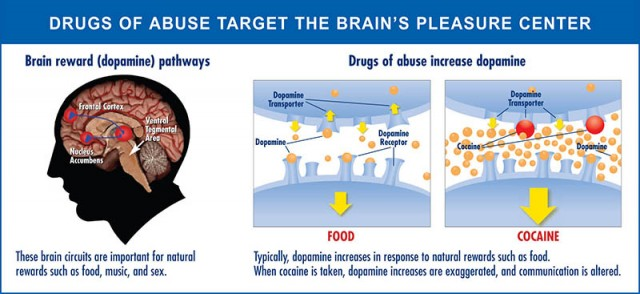 Drugs of Abuse Target the Brains pleasure center - Drug Addict